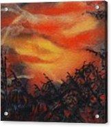 Fury Acrylic Print by Shirley McMahon