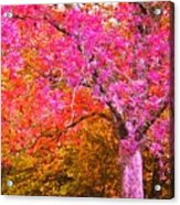 Fuschia Tree Acrylic Print