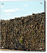 Factory Wood Piles Acrylic Print
