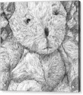 Fuzzy Wuzzy Bear  Acrylic Print