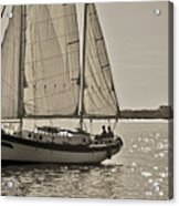 Gaff Rigged Ketch Cutter Sailing The Charleston Harbor Acrylic Print