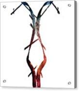 Galaxy Figure Acrylic Print