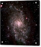 Galaxy In Traiangulum Acrylic Print