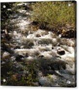 Galena Creek Acrylic Print