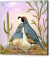 Gambel Quails Friends Forever Acrylic Print