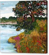 Ganges Tree Acrylic Print