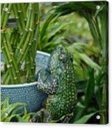 Garden 30 Acrylic Print