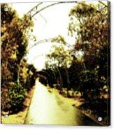 Garden Arches Of Gold Acrylic Print