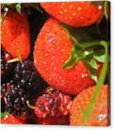 Garden Berries Acrylic Print