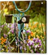 Garden Bicycle Acrylic Print