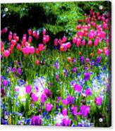 Garden Flowers With Tulips Acrylic Print