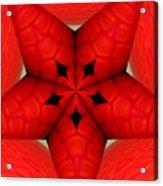 Garden Glass Orb Kaleidoscope Abstract Acrylic Print