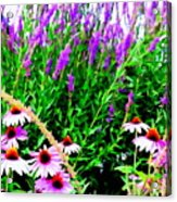Garden Glory Acrylic Print