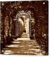 Garden Hollow  Acrylic Print