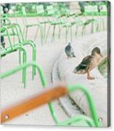 Garden In Paris Acrylic Print