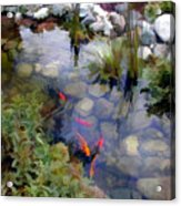 Garden Koi Pond Acrylic Print