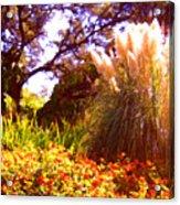 Garden Landscape Acrylic Print