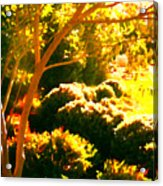 Garden Landscape On A Sunny Day Acrylic Print