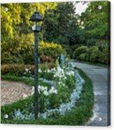 Garden Path #1 Acrylic Print