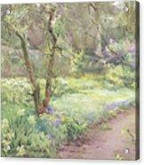 Garden Path Acrylic Print by Mildred Anne Butler