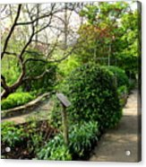 Garden Paths Acrylic Print