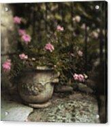 Garden Planter Acrylic Print