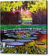 Garden Ponds - Tower Grove Park Acrylic Print