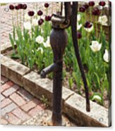 Garden Pump From The Old Days Acrylic Print