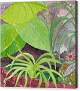 Garden Scene 9-21-10 Acrylic Print