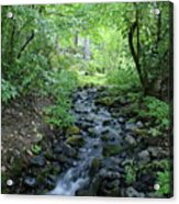 Garden Springs Creek In Spokane Acrylic Print