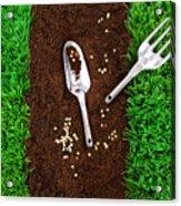 Garden Tools On Earth Acrylic Print by Sandra Cunningham
