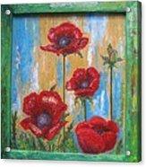 Gardens Poppy Acrylic Print