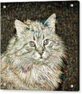 Garfield Acrylic Print