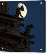 Gargoyle Night Watch Acrylic Print by Matthew Green