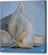 Garlic IIi Acrylic Print