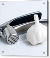 Garlic Press With Garlic Acrylic Print