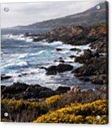 Garrapata Beach In Big Sur Acrylic Print