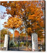 Gate And Driveway Acrylic Print