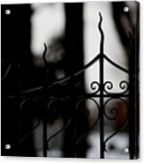 Gated Woods Acrylic Print