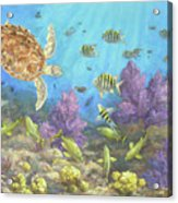 Gathering In The Reef Acrylic Print