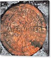 New Orleans Water Meter Cover 9 Months After Katrina Acrylic Print