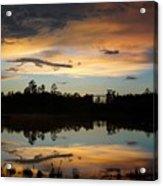 Gator In The Sky Acrylic Print