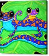Geckos Acrylic Print