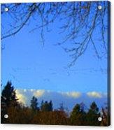 Geese Across The Sky Acrylic Print