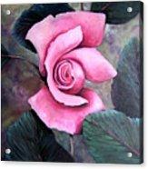 Generational Rose Acrylic Print