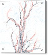 Genetic Branches Acrylic Print