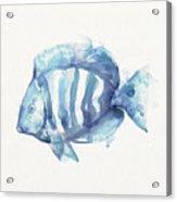 Gentle Fish Acrylic Print