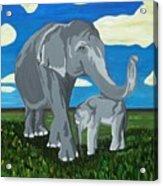 Gentle Giants Acrylic Print