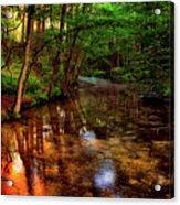 Gentle Stream Acrylic Print