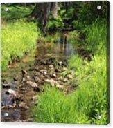 Gently Flowing Brook Acrylic Print